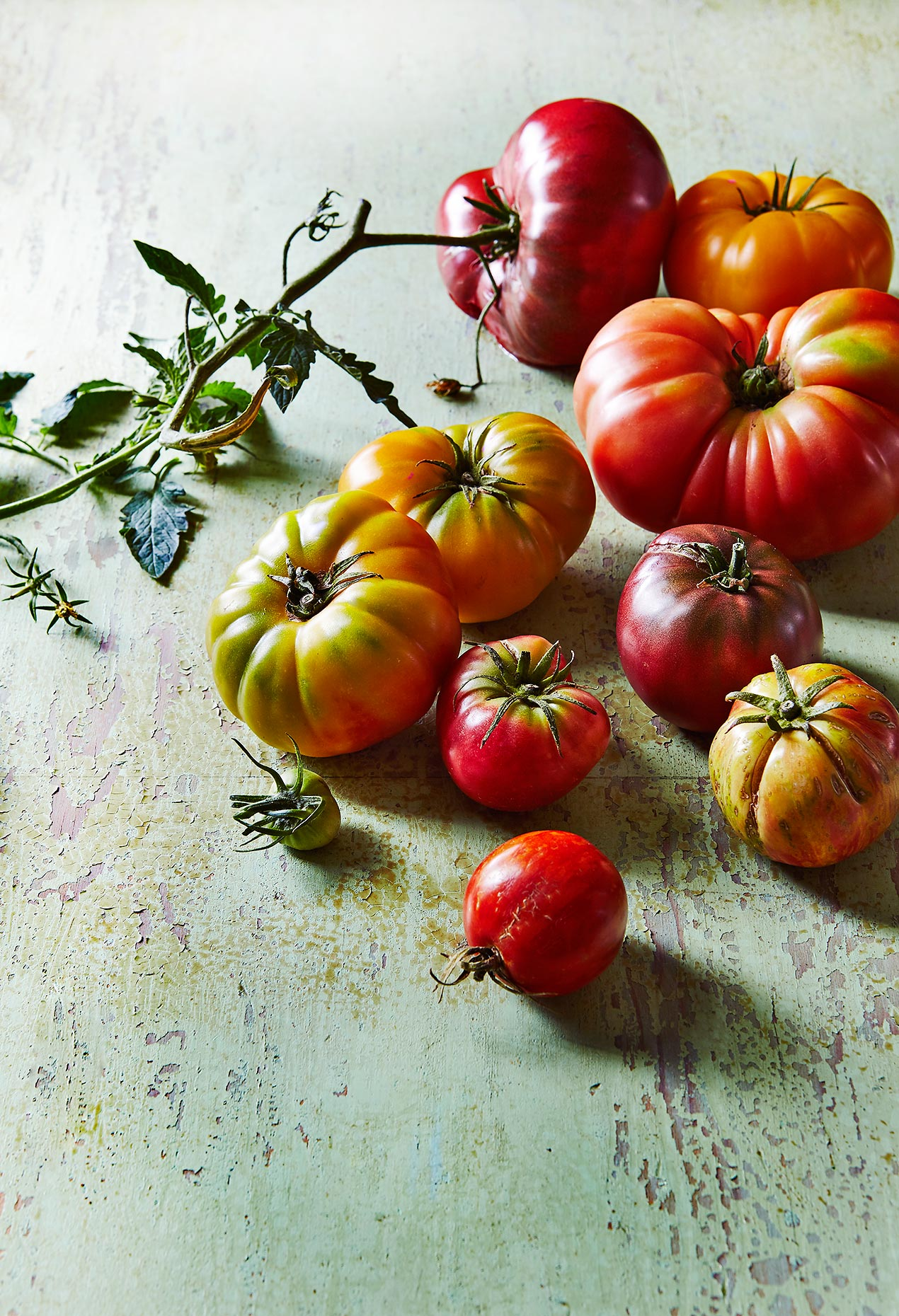 Tomatoes_8_2017_3021_Master