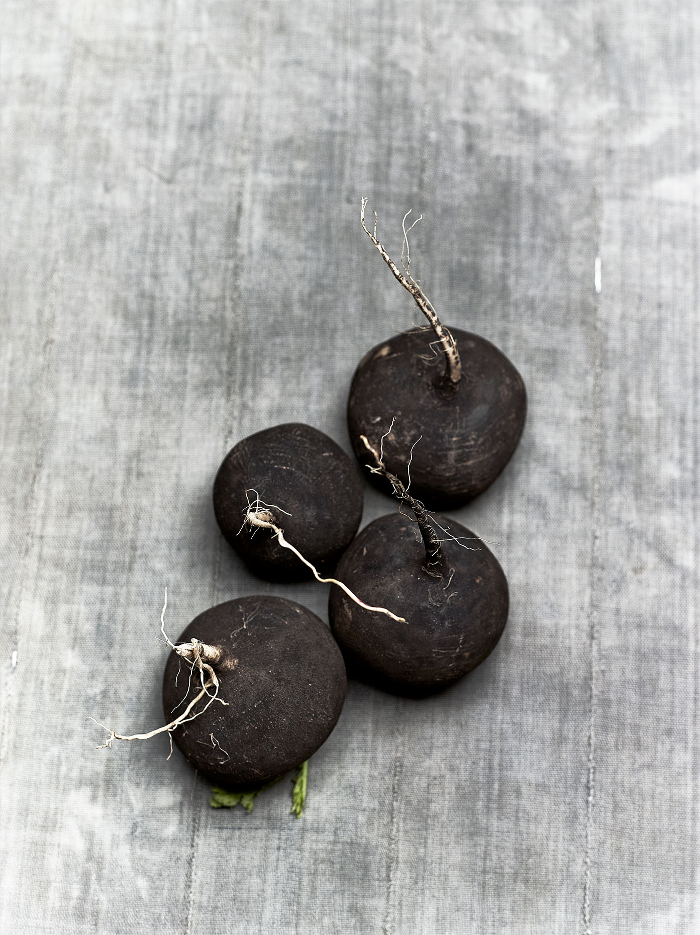Veg_Test_Blk_Radish_SOFT_11_2015_6876_Flat_FINAL_1